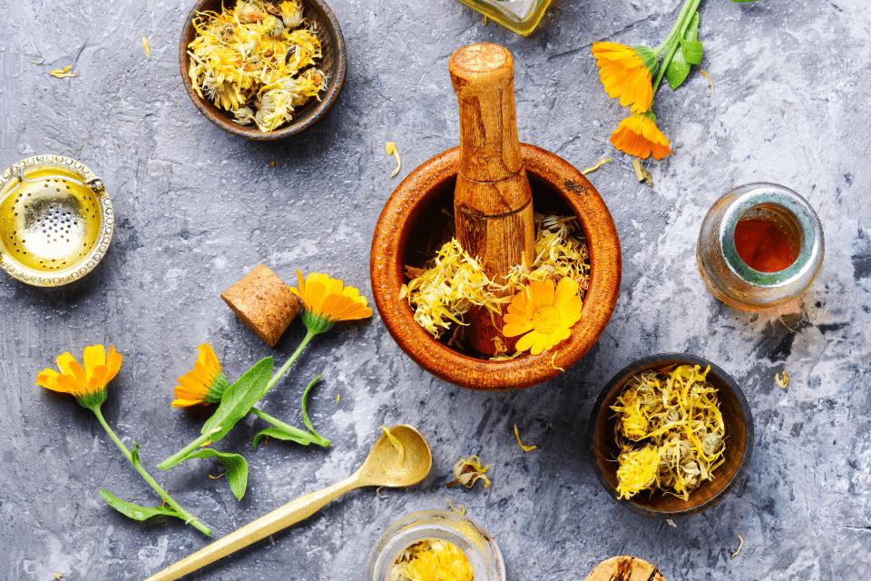 La naturopathie, solution naturelle pour détecter une dysbiose dans votre flore intestinale.